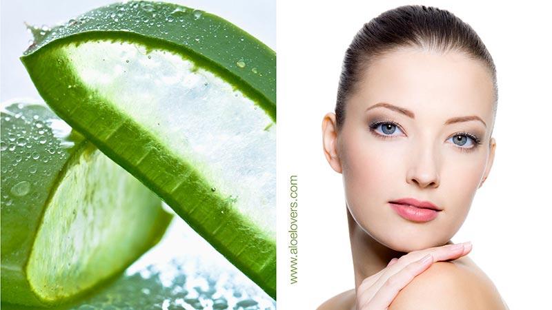 I benefici dell'Aloe Vera per la cura della pelle