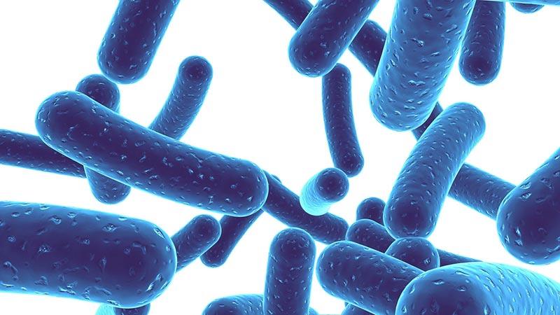 probiotici-e-salute-dellapparato-digerente