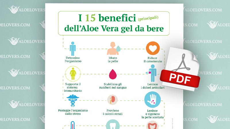 I 15 benefici dell'Aloe Vera gel da bere