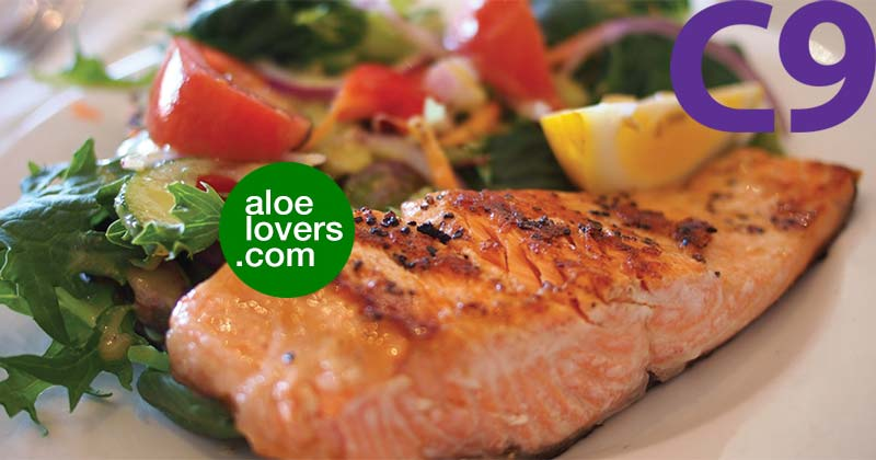 ricette-detox-per-c9-forever-clean-9-salmone