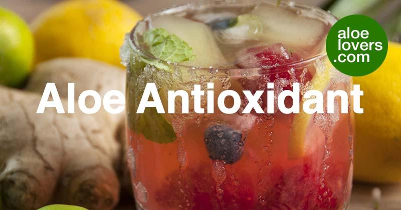 bevande-detox-con-aloe-vera-aloelovers-aloe-antioxidant