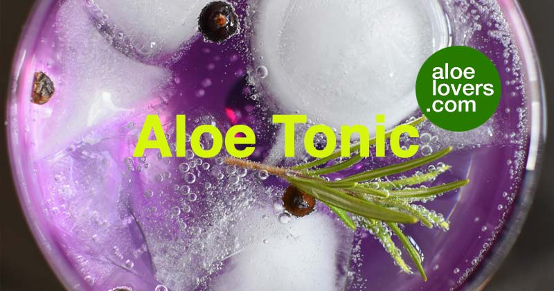 bevande-detox-con-aloe-vera-aloelovers-aloe-tonic