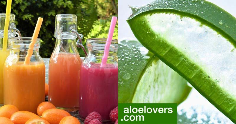 Bevande detox con Aloe Vera