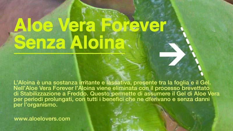 clean-9-forever-c9-forever-controindicazioni-e-effetti-collaterali-aloina-aloelovers