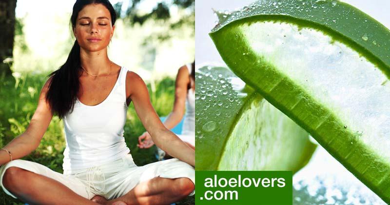 come-essere-felice-con-aloe-vera-gel-e-meditazione-aloelovers