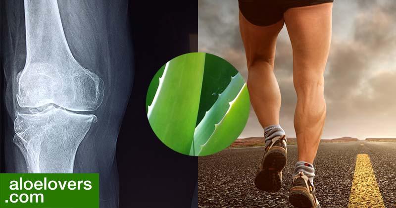 rimedi-naturali-per-artrite-e-aloe-vera-per-le-articolazioni-corsa