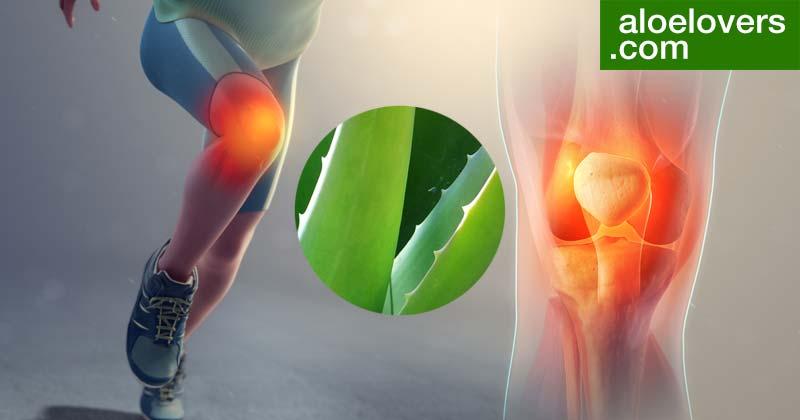 Rimedi naturali per artrite e Aloe Vera per le Articolazioni