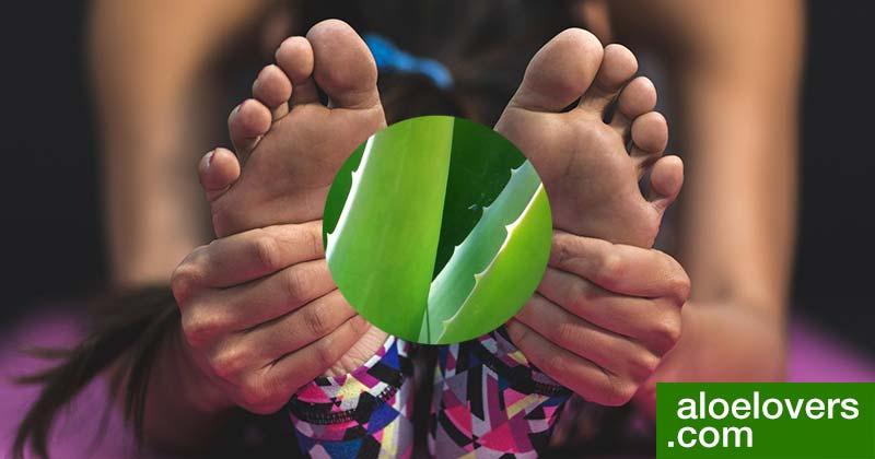 rimedi-naturali-per-la-circolazione-con-aloe-vera-yoga