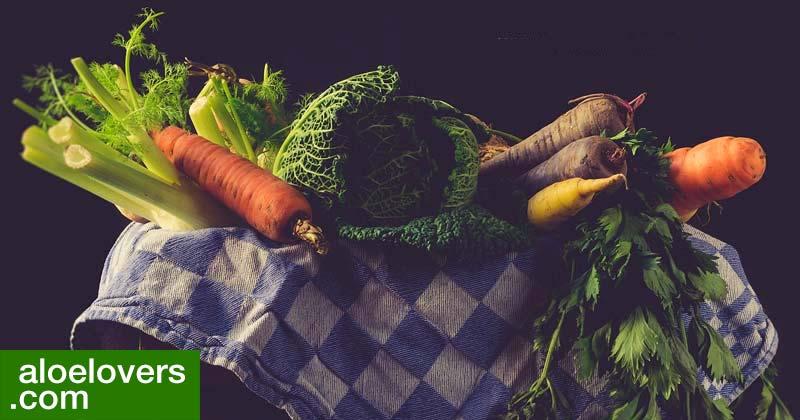 come-depurare-il-corpo-con-aloe-vera-dopo-il-weekend-verdura