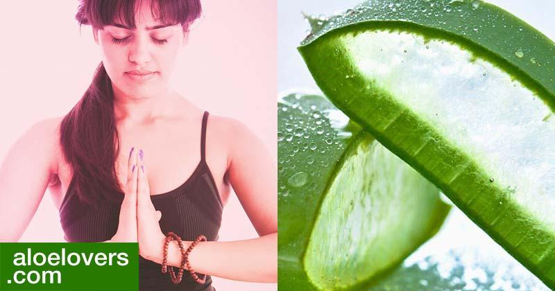 Benefici della meditazione e Aloe Vera per vivere bene