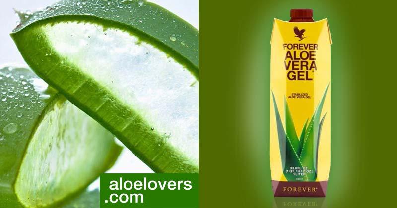 nuova-aloe-vera-gel-forever-living-confezione-tetrapak-bottiglia